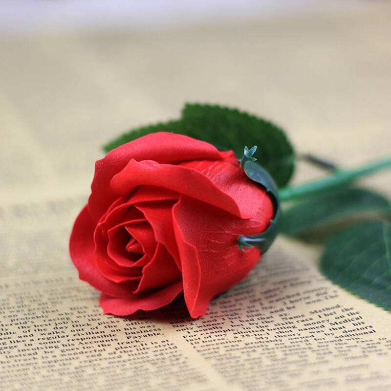 玫瑰花如何种植?玫瑰花的生长习性