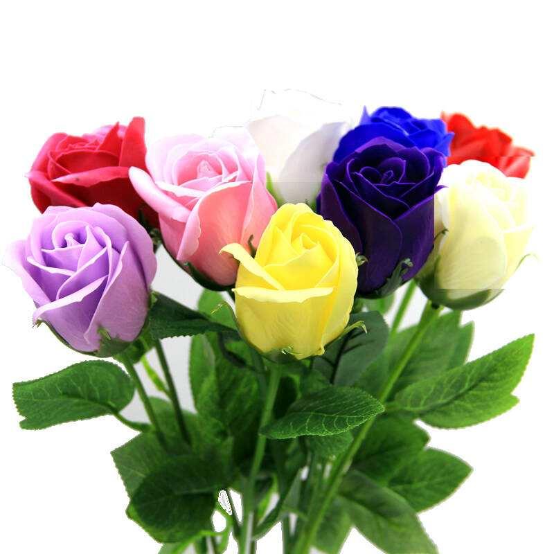玫瑰花的栽培方法以及病害防治方法有哪些?